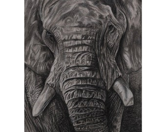 Charley - Charcoal By Mouth - Mini Print, Lustre (5x7 Inch)