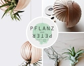 "Hanging Planter for Air Plants ""PFLANZ-PETER"" (without plants)"