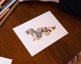 5 Min Pet Portraits