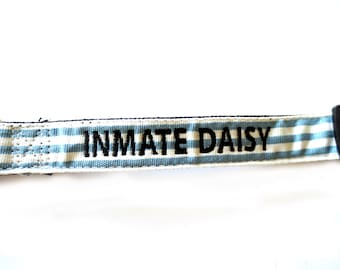 Custom Prison Break Blue and White Dog Collar Personalized Embroidery
