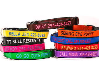 Personalize Dog Collar Custom Made Embroider With Name and Number