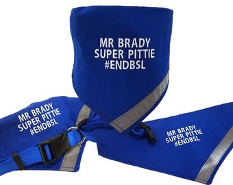 Custom Embroidered Personalized Blue Dog Collar And Bandana With Reflective Safety Strip