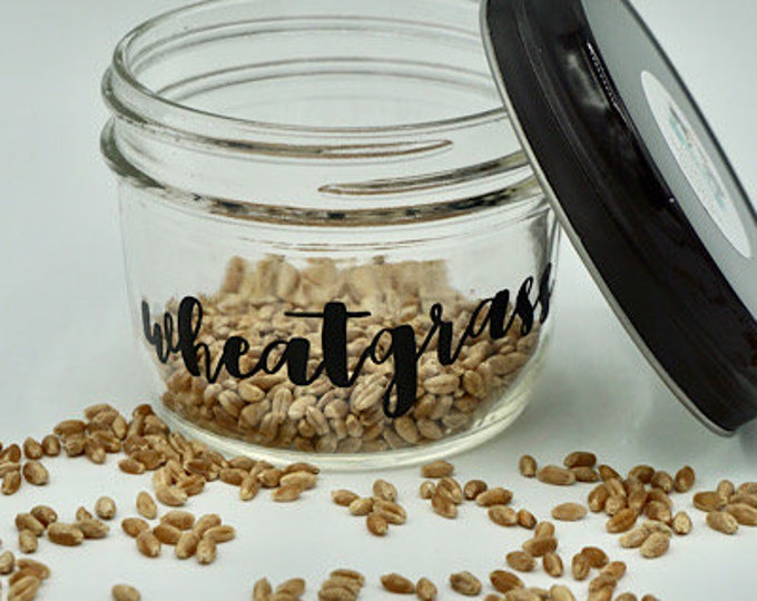 Organic Wheatgrass Kit- Jar w/ 1 oz of seeds