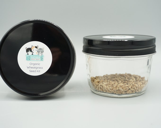 Organic Wheatgrass Kit- Jar Only