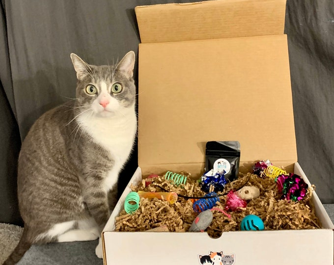 CatBox- The Original Activity Box