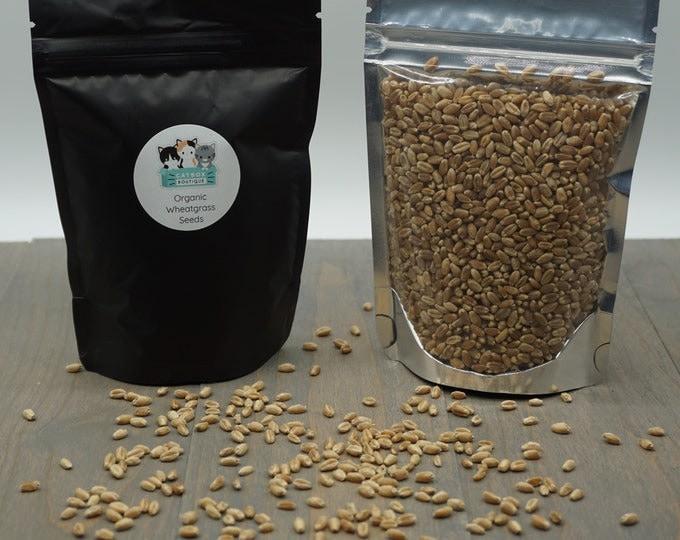 Organic Wheat Grass Seeds (Non-GMO) 5 oz bag