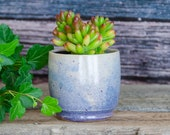 Purple Succulent Planter, Hand Thrown Porcelain, Ceramic, Air Plant, Herb Garden Caldwell Pottery