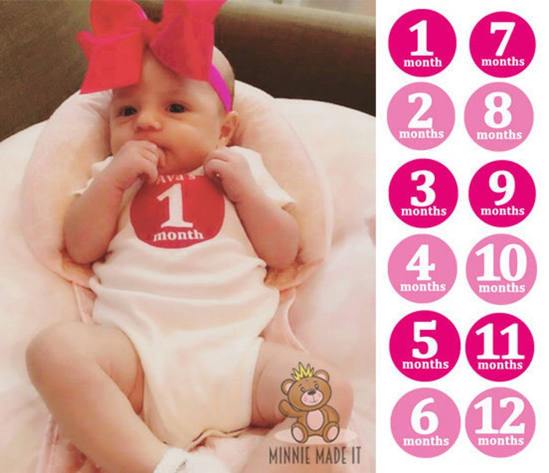 Pink Baby Girl Monthly Bodysuits Set Of 5 Or 12 Gift Box Included Baby Girl Milestone Photo One Piece Set Baby S First Year Gift Set