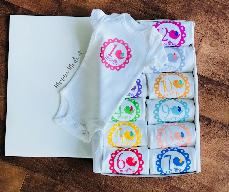 Baby Girl Monthly Set Bodysuits Set Of 5 Or 12 Gift Box Included Colorful Baby Bird Design Newborn Baby Girl Gift Baby Milestone Set