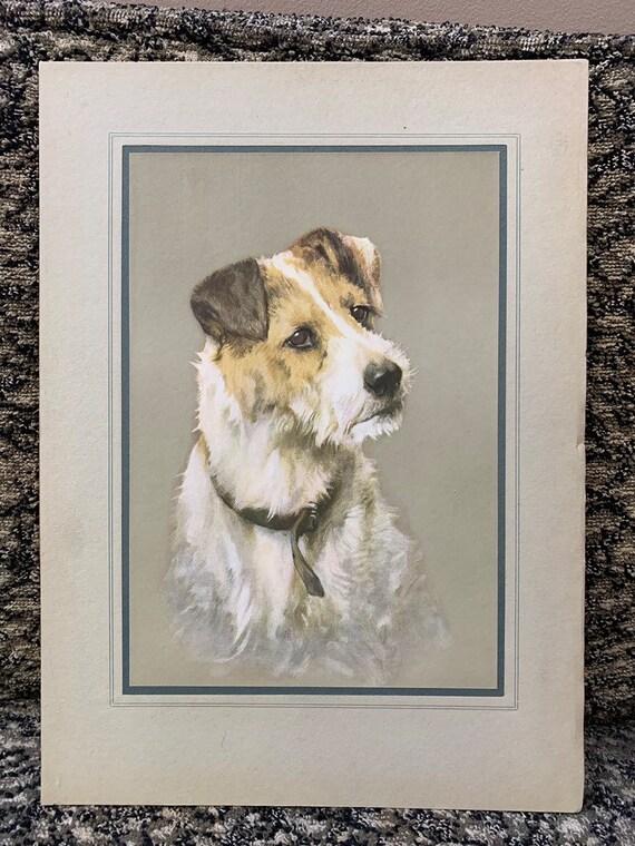 Gorgeous vintage print of a dog