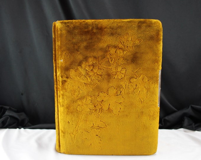 Vintage Gold Crushed Velvet Photo Album With Gold Plated Blank Cartouche