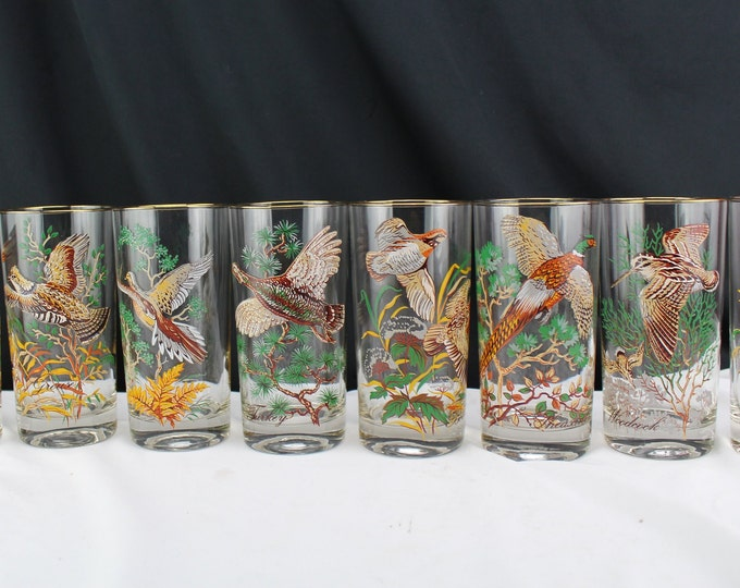 8 Vintage Mid Century Game Birds Highball Glasses Barware Drinkware