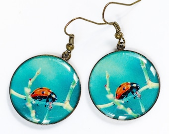 Ladybug dangle earrings Statement earrings Blue earrings Mother day gift for mom birthday gift for sister gift for girlfriend gift for her