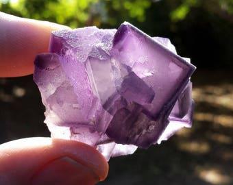 Purple Fluorite  Cluster