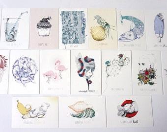 18 ORIGINALS Postcards illustrations sexy animals graphism colored funny