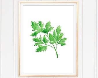 Kitchen Wall Art, Parsley Printable, Food Art, Herb Wall Art, Cooking Art, Watercolor Parsley, Botanical Art, Parsley Painting, Culinary Art