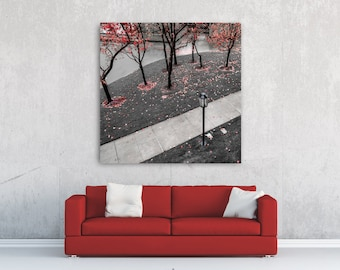 """Fine Art Photo Print • Square Canvas Wall Art Photography • Park Fall Colors Black & White • Red Maple Autumn Leaves • """"The Fallen Path 2"""""""