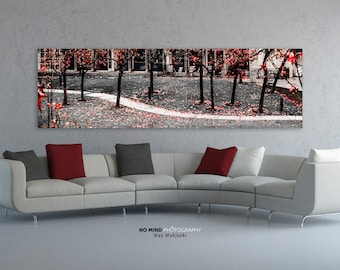 """Fine Art Photo Print • Wide Panoramic Canvas Wall Art • Park Fall Colors Black & White • Red Maple Autumn Leaves • """"The Fallen Path 1"""""""