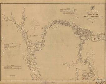 Whale Branch Passage Map between Coosaw and Broad Rivers - South Carolina 1875