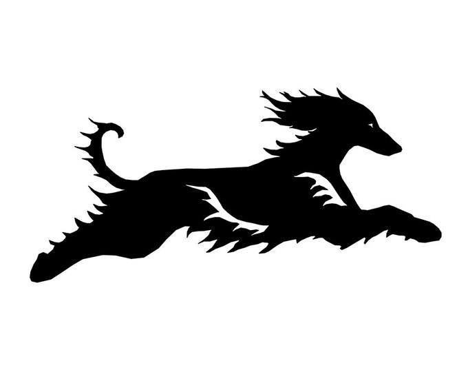 Afghan hound, LeChienArtistiQ