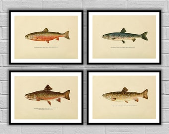 Fishing art set Trout 4 pack Fishing wall art Angling Fishing art posters Fly fisherman gifts for him Fisherman gift idea 043-046