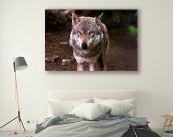 Animal Photography Nature Landscape Nature Photography Wolf Home Decor Wall Decor Forest Decor PH087