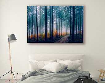 Forest Photography Trees in Forest Nature Landscape Nature Photography Home Decor Tree Photo  Wall Decor Forest Decor PH052