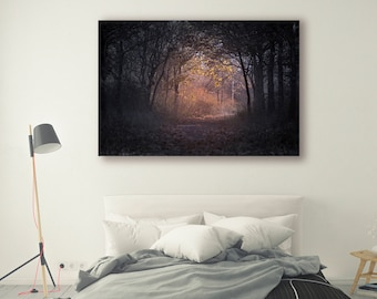Forest Sunset Photography Pine Trees in Forest Tree Art sunset Landscape Nature Photography Home Decor Tree Photo  Wall Decor PH018