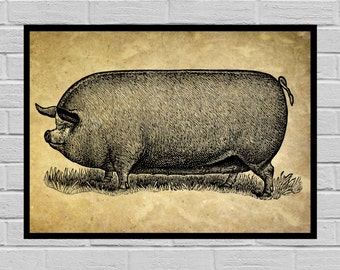 Antique Pig print Old Paper Vintage Dictionary page Pig poster Vintage Pig Art Black and white Print Pig prints Pig print H16