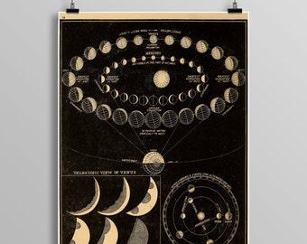 Vintage astronomy print, zodiac, constellations, Venus, Celestial Maps, Vintage planets, Telescope, Planets, Astronomy Illustration 449