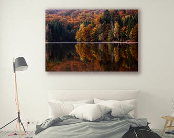 Tree Photography Trees in Forest Autumn Nature Landscape Nature Photography Home Decor Tree Photo  Wall Decor Forest Decor PH060