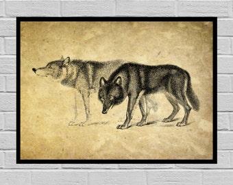 Antique Wolf print Old Paper Vintage Dictionary page Wolf poster Vintage Wolf Art Wolf Print Wolf print Wolf print H10