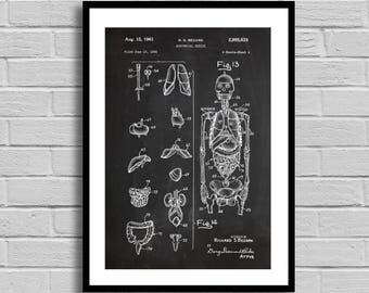 Vintage Skeleton Patent Human Spine Print Skeleton Poster Anatomical Skeleton Medical Skeleton Doctors Office Decor Bones p957