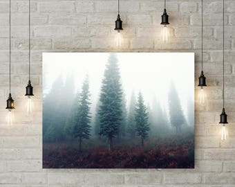 Tree Photography Trees in Forest Nature Landscape Nature Photography Home Decor Tree Photo  Wall Decor Mist Seasonal PH084