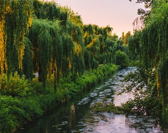 Forest Photography Rivers and Streams Scenery Nature Landscape Nature Photography Home Decor Sunset Wall Decor Forest PH0125