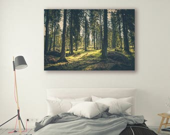 Sun shine Print Large Wall Art Print Fine Art Photography Print Nature Photography Neutral Wall Decor tree poster Decor Forest PH07