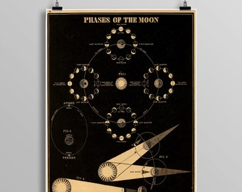Phases OF THE MOON, constellations, Venus, Celestial Maps, Vintage Moon, Vintage planets, Telescope, Planets, Astronomy Illustration 458
