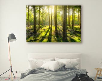 Sun shine Print Large Wall Art Print Fine Art Photography Print Nature Photography Neutral Wall Decor Tree poster Decor Forest PH04