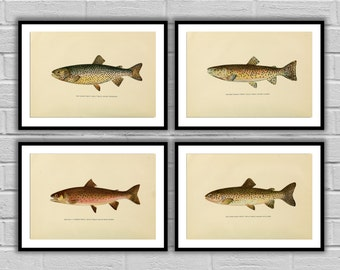 Fishing art set Trout 4 pack Fishing wall art Angling Fishing art posters Fly fisherman gifts for him Fisherman gift idea 047-050
