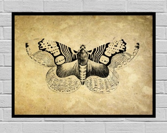 Antique Butterfly print Old Paper Vintage Dictionary page Butterfly poster Vintage Butterfly Art Print Butterfly print Butterfly H9
