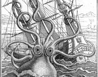 Octopus Art Print Kraken Sea Monster Colossal Octopus Print Art Print Natural History Poster Natural History Print Octopus 161