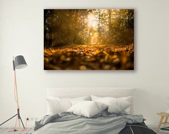 Fall leaves Print Large Wall Art Print Thick Forest Fine Art Photography Print Nature Photography Wall Decor Trees Nature PH042