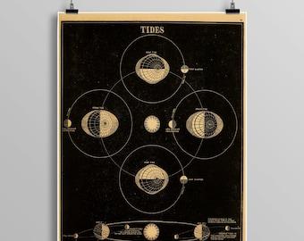 Vintage tides print, constellations, Venus, Celestial Maps, Vintage Moon, Vintage planets, Telescope, Planets, Astronomy Illustration 466