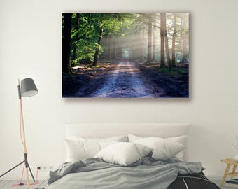 Forest Photography Trees in Forest Forest Path Nature Landscape Nature Photography Home Decor Tree Photo  Wall Decor PH063