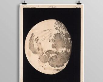 Moon Art Print with Moon Phases and Venus Transit Astronomy Art Vintage Print, Best-selling print, Vintage American 0440