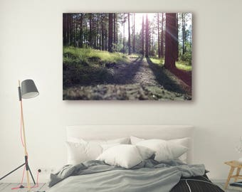 Tree Photography Trees in Forest Tree Art Nature Landscape Nature Photography Home Decor Tree Photo  Wall Decor Forest PH043