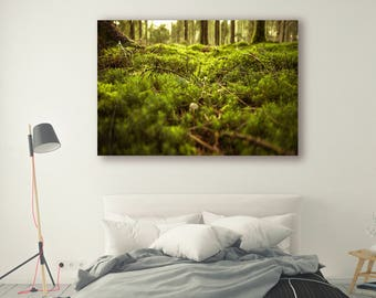 Mossy Forest Photography Trees in Forest Mossy Tree Art Landscape Nature Photography Home Decor Tree Photo Wall Decor Forest PH021