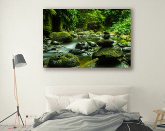 Nature Photography Forest Scene Tree Art Nature Landscape Home Decor Wall Decor Forest Rivers and Streams PH062