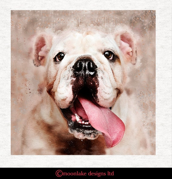 """English BULLDOG Quilting /& Sewing.Actual pic is 8x8 Head on 16/"""" Fabric Panel"""