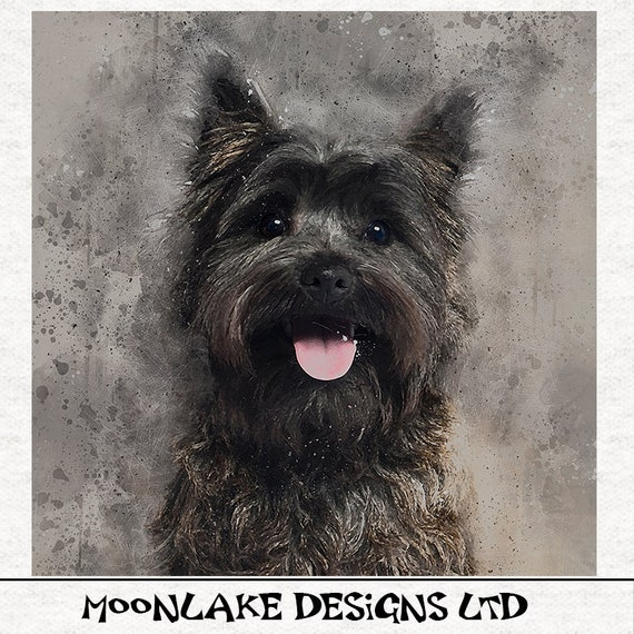 Black Cairn Terrier Fabric Craft Panels in 100/% Cotton or Polyester Dog
